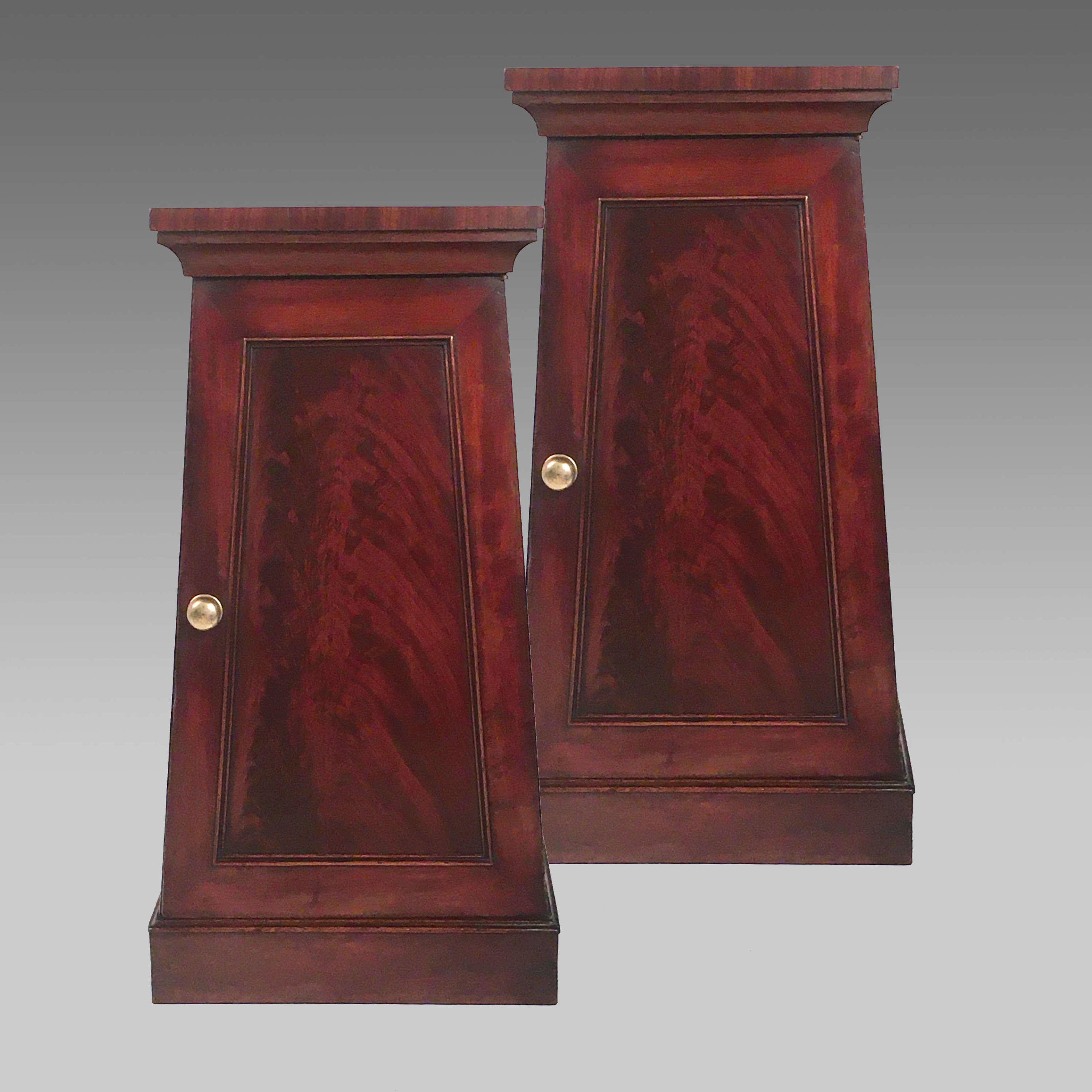 Pair classical Regency mahogany pedestal cabinets