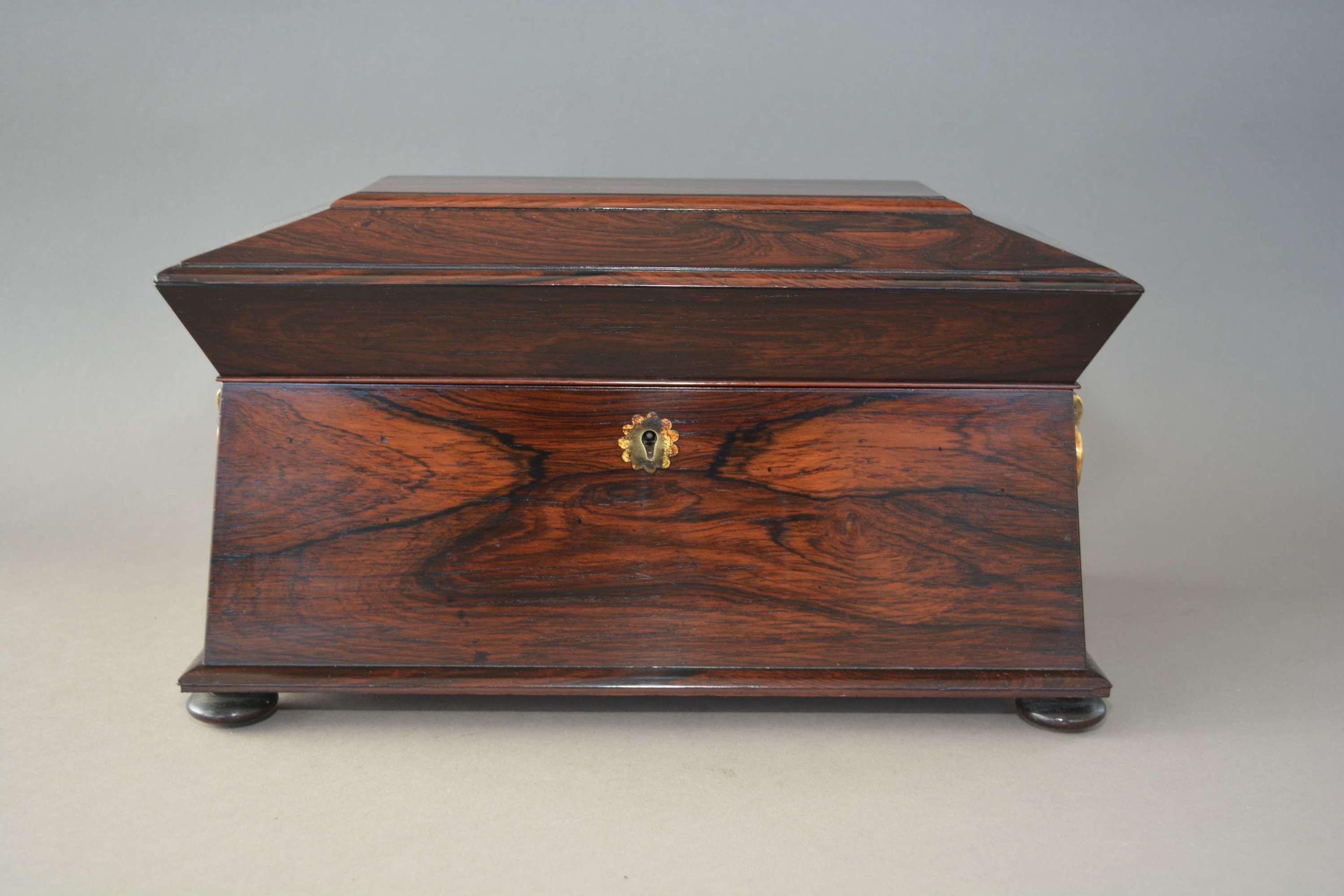 Large Rosewood William IV sarcophagus tea caddy English circa.1835