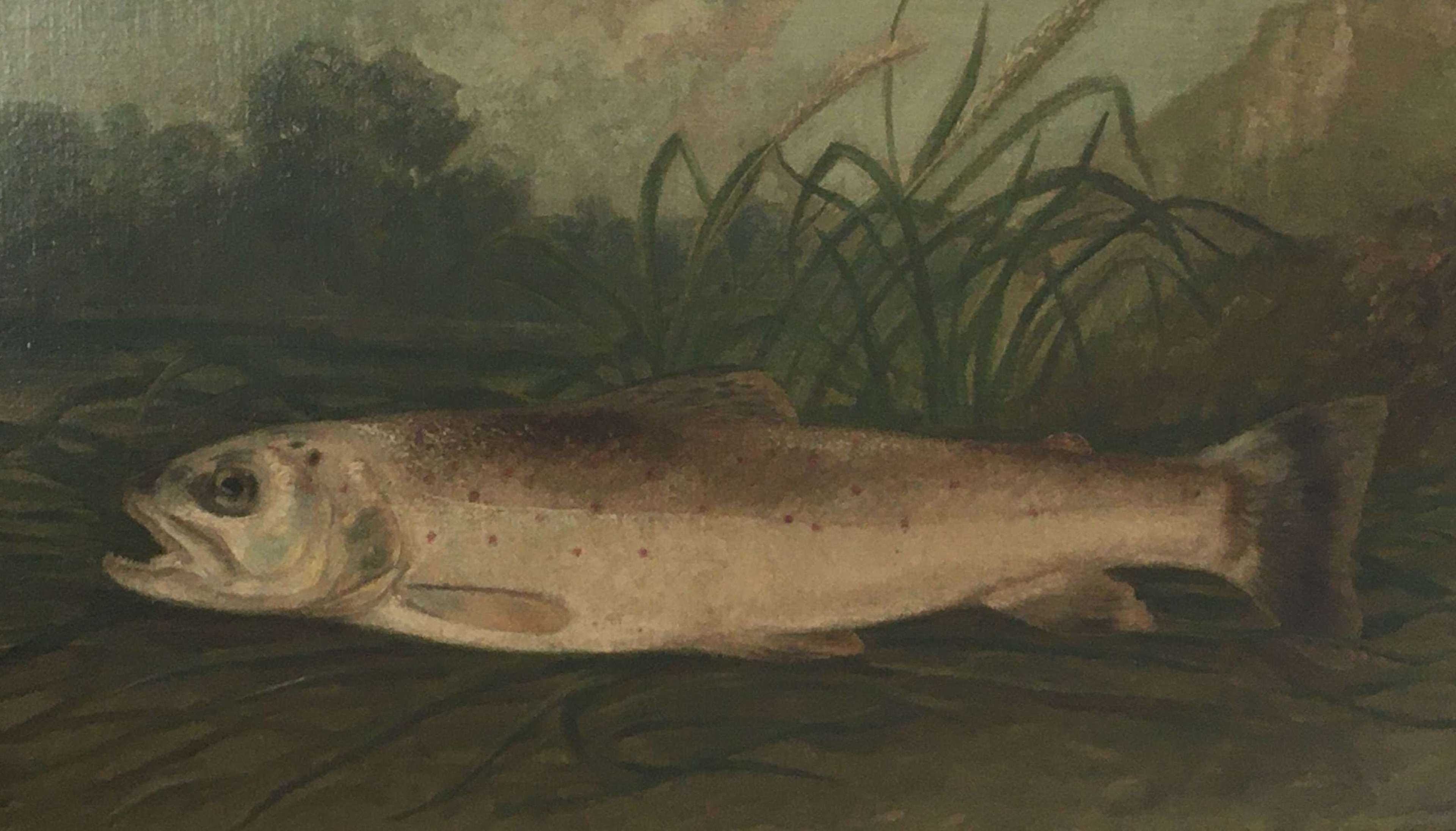 19th century oil on board of a Trout in the manner of Roland Knight
